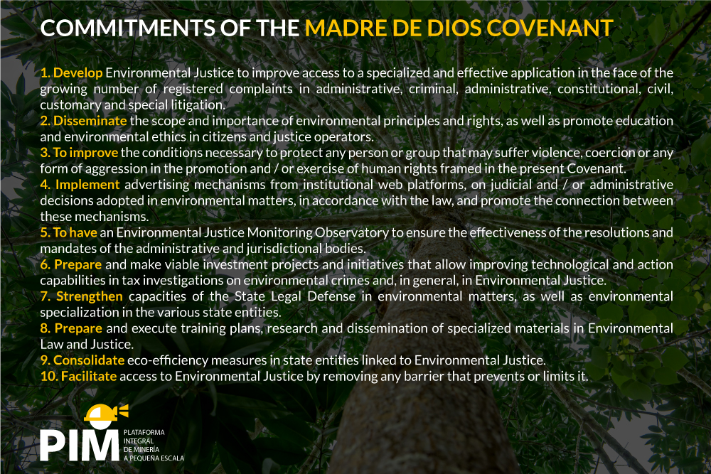OPINION | Why is the Madre de Dios Covenant for Environmental Justice in Peru important?