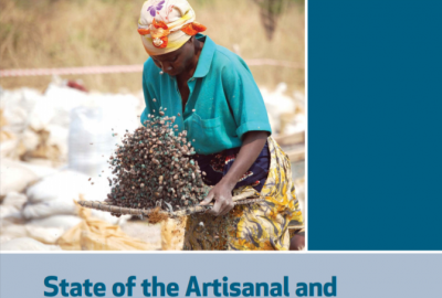 2019 State of the Artisanal and Small-Scale Mining Sector